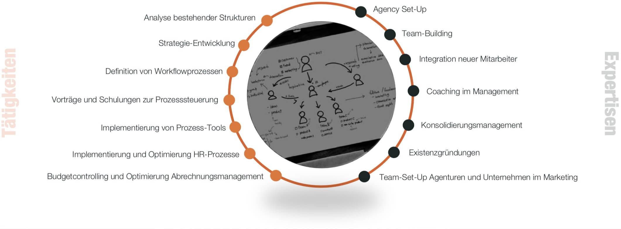 Infografik Organisationsentwicklung